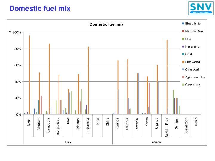 Domestic fuel mix