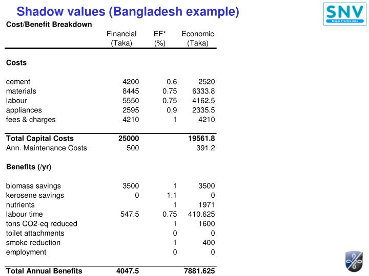 Shadow values (Bangladesh example)
