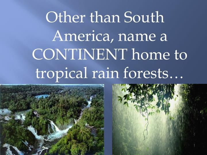 Other than South America, name a CONTINENT home to tropical rain forests…