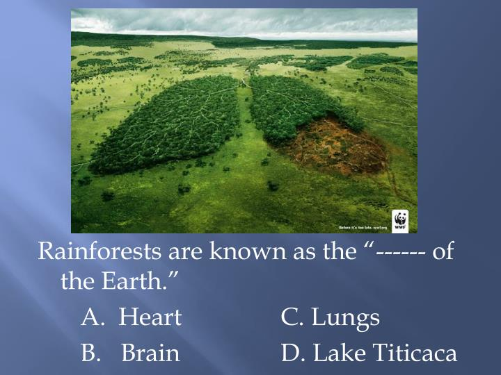 """Rainforests are known as the """"------ of the Earth."""""""
