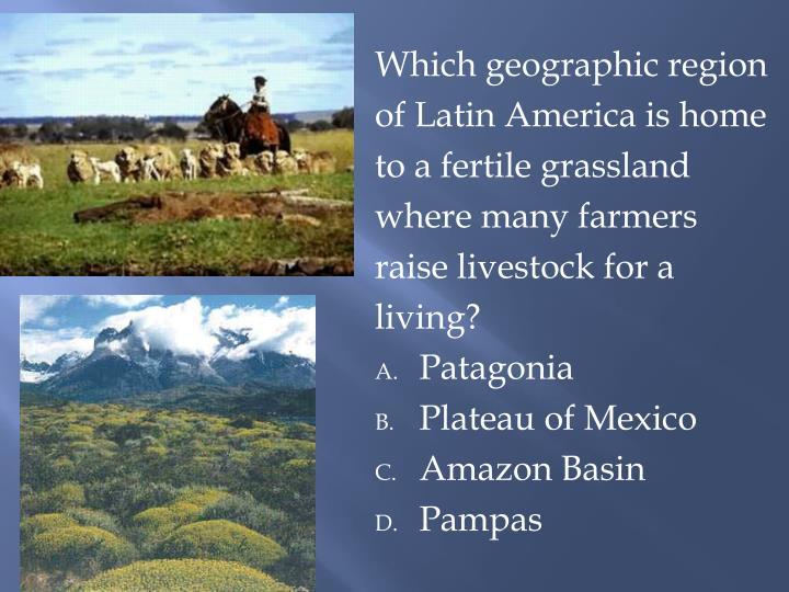 Which geographic region