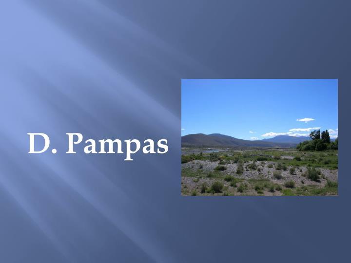 D. Pampas