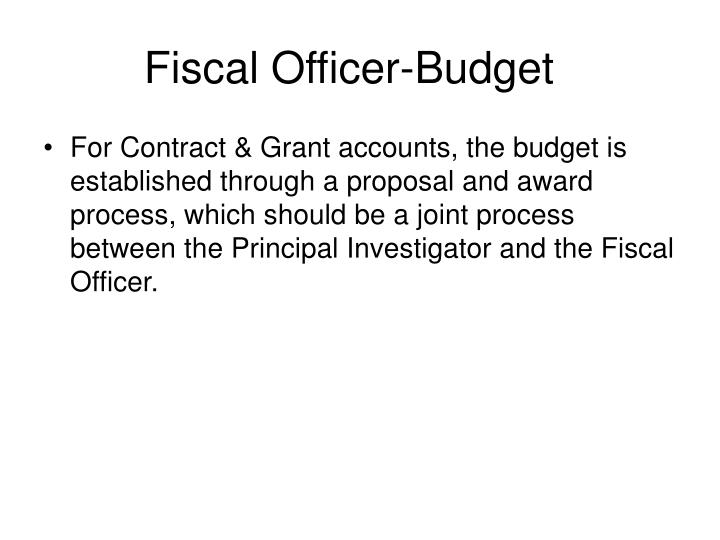 Fiscal Officer-Budget
