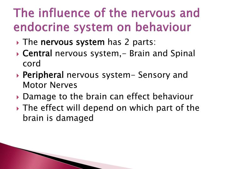 the role of the nervous system in behaviour Neuroscience is the scientific study of the nervous system (the brain, spinal cord, and peripheral nervous system) and its functions the belief that the brain is the organ that controls behavior has ancient roots, dating to early civilizations that connected loss of function to damage to parts of the brain and spinal cord but the.