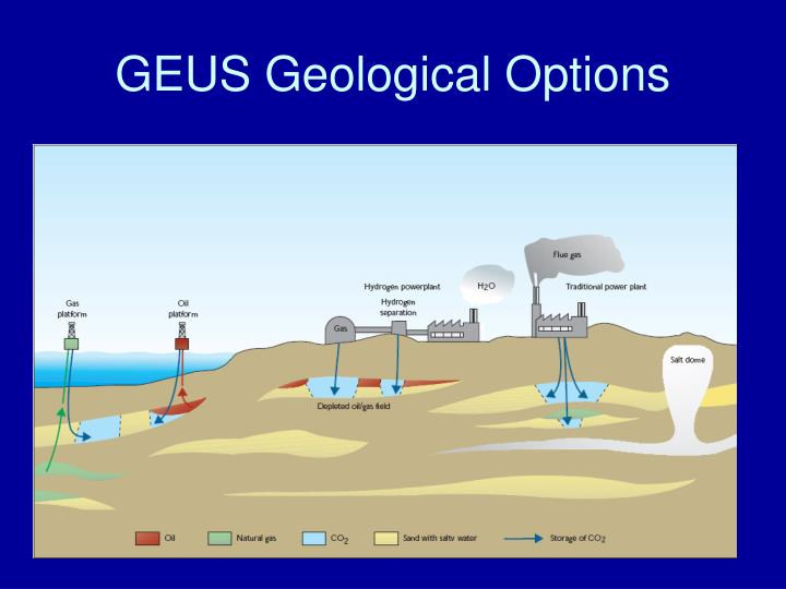 GEUS Geological Options
