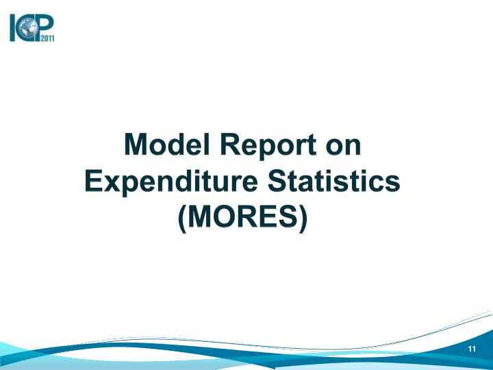 Model Report on Expenditure Statistics (MORES)