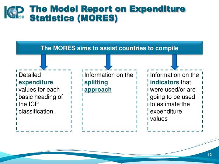 The Model Report on Expenditure Statistics (MORES)