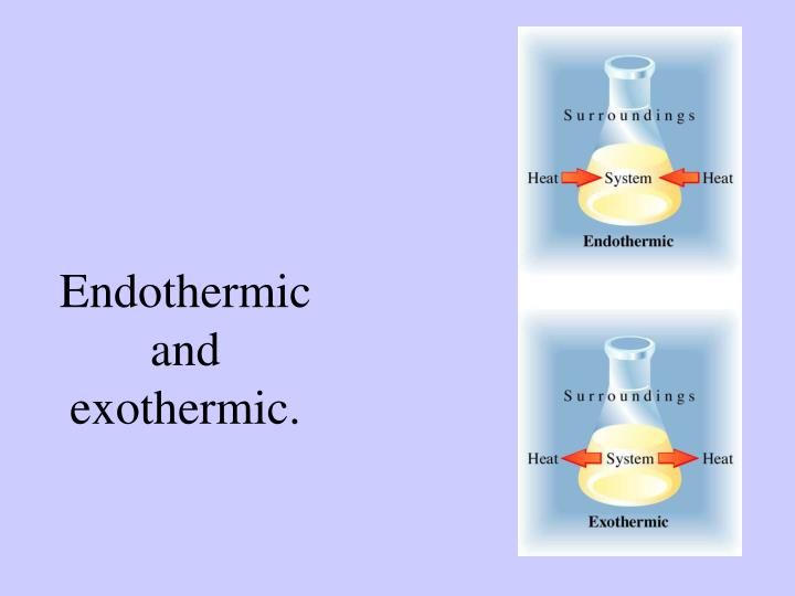 Endothermic and exothermic.