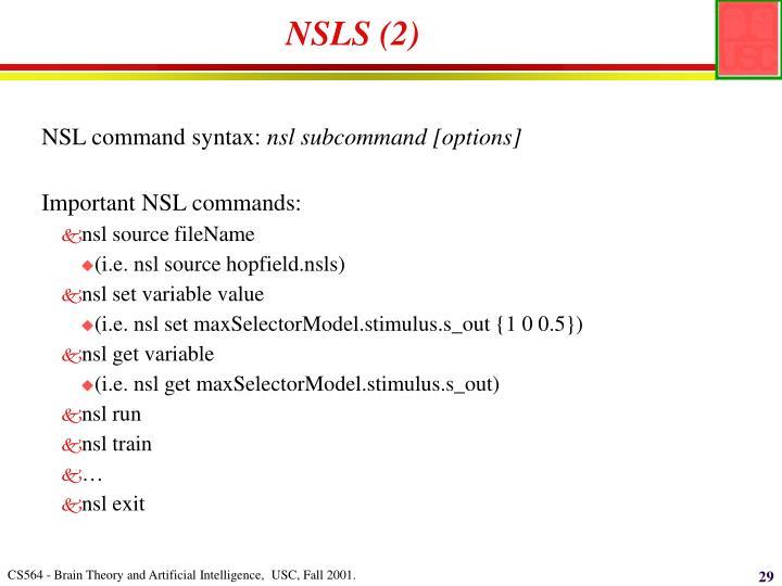 NSLS (2)