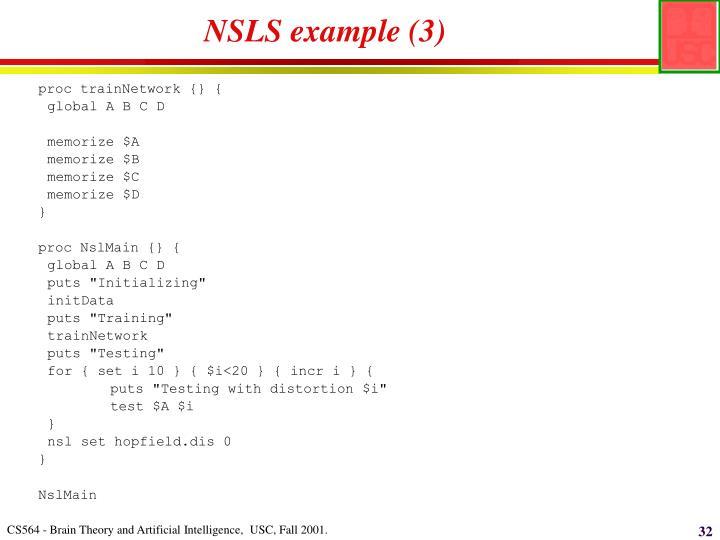 NSLS example (3)