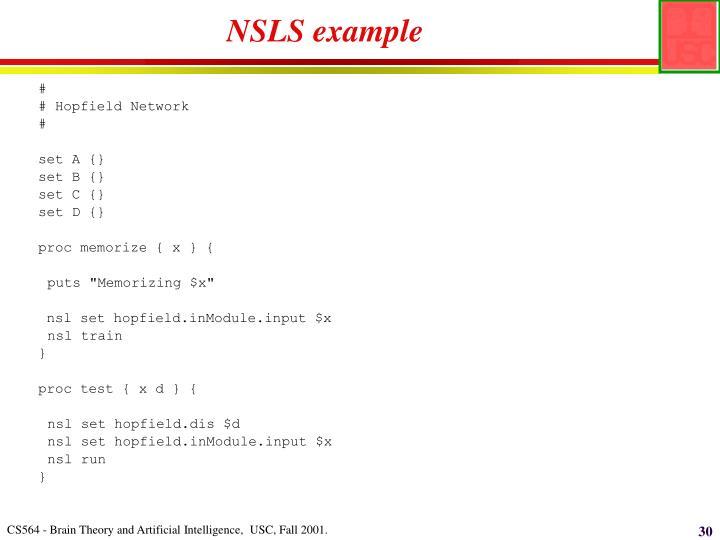 NSLS example