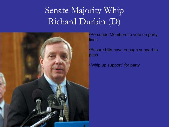 Senate Majority Whip
