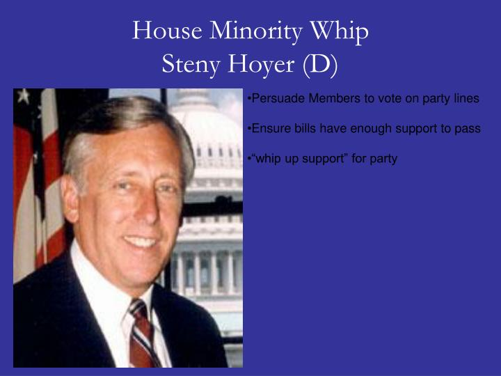 House Minority Whip