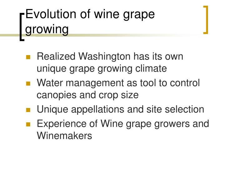 Evolution of wine grape growing