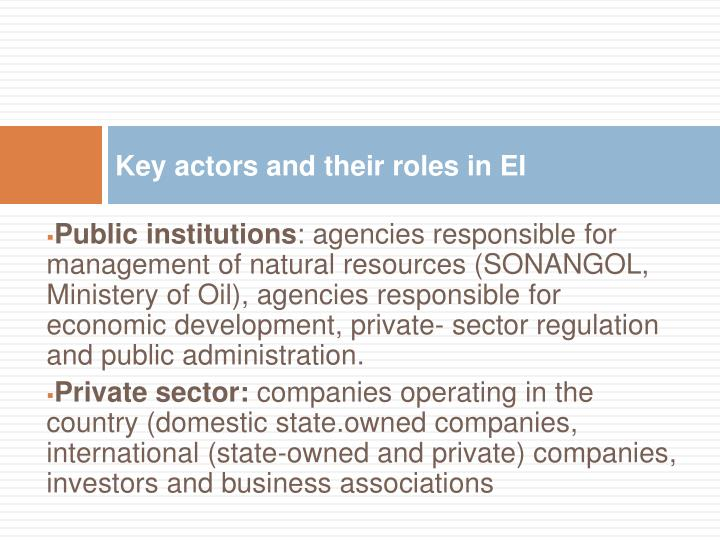 Key actors and their roles in EI