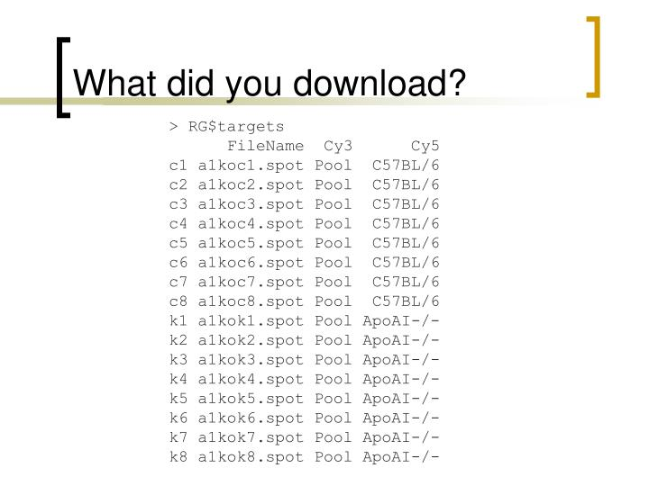 What did you download?