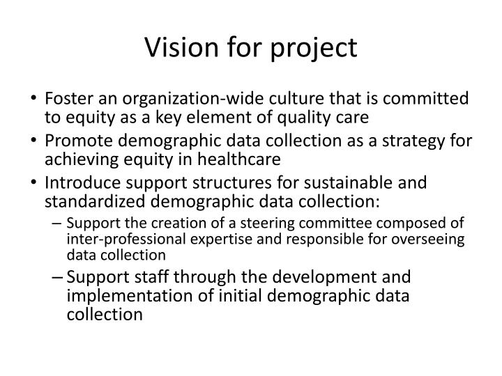 Vision for project