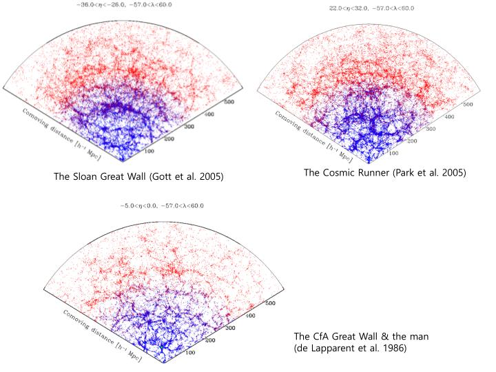 The Cosmic Runner (Park et al. 2005)