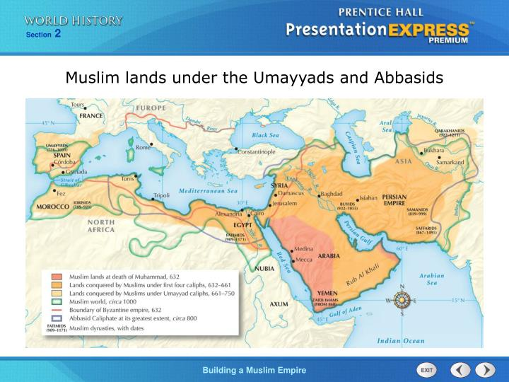 Muslim lands under the Umayyads and Abbasids