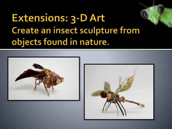 Extensions: 3-D Art