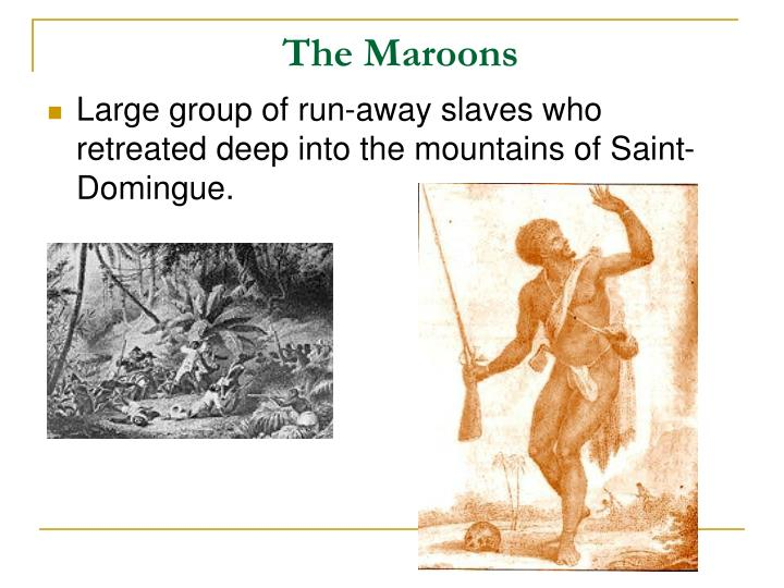 The Maroons