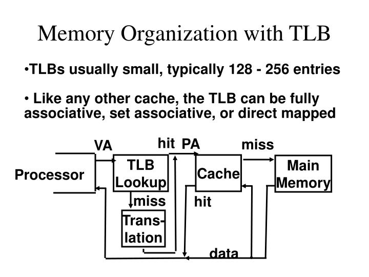 Memory Organization with TLB
