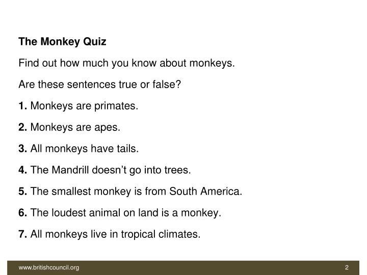 The Monkey Quiz