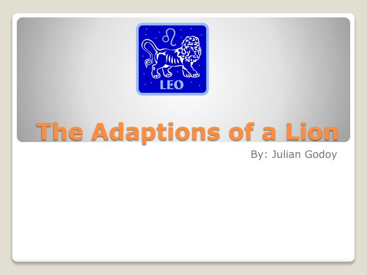 The adaptions of a lion