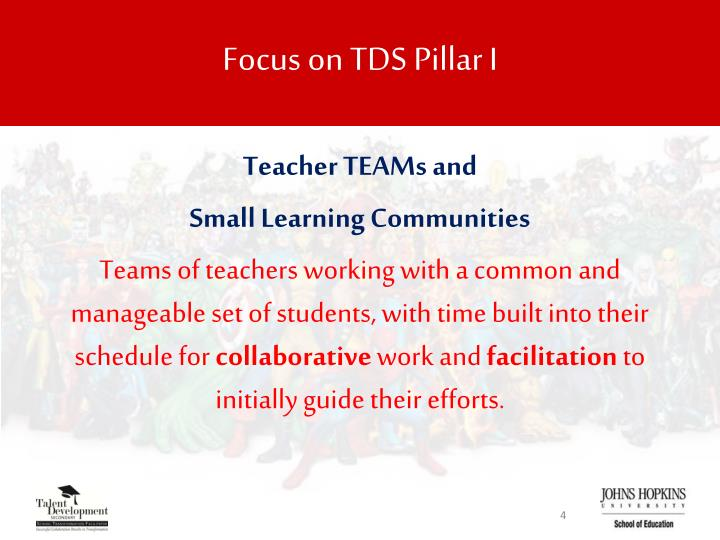 Focus on TDS Pillar I