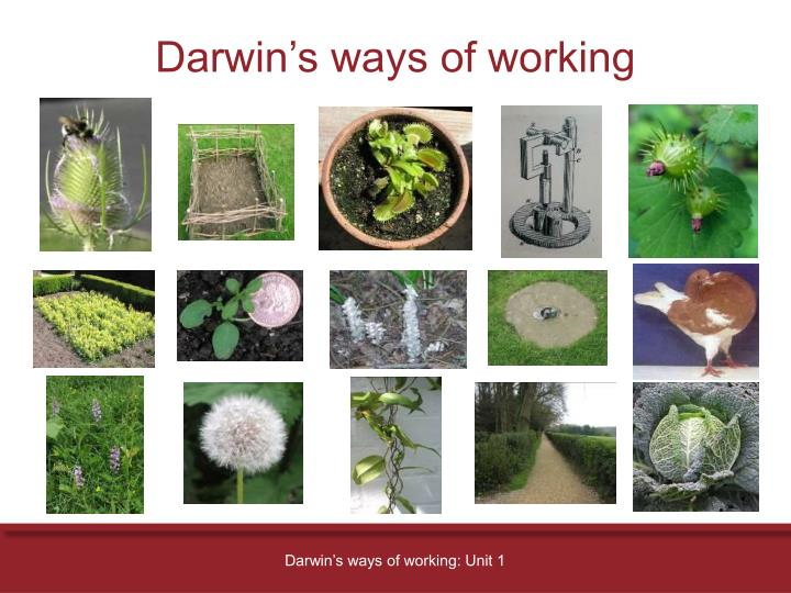 Darwin's ways of working