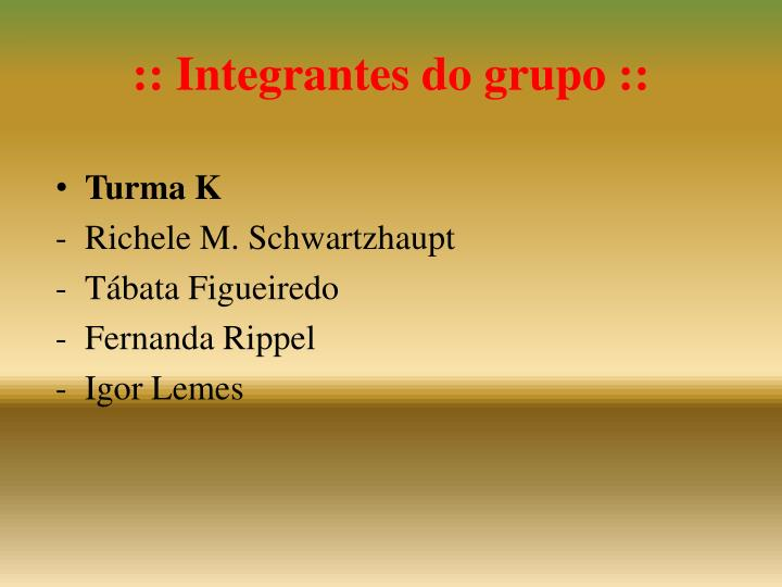 :: Integrantes do grupo ::