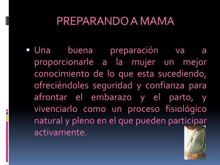 PREPARANDO A MAMA