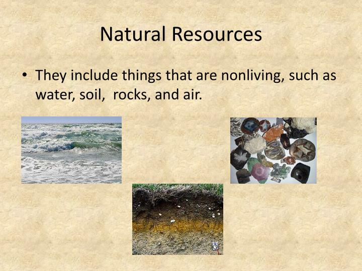 Ppt classifying resources powerpoint presentation id for Natural resources soil information