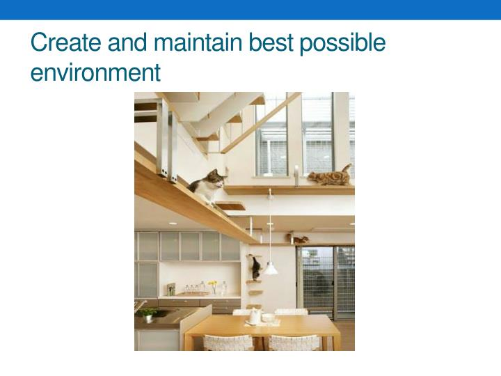Create and maintain best possible environment