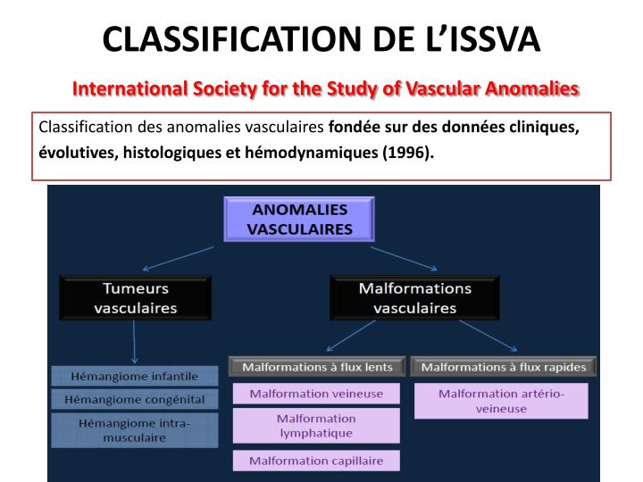 CLASSIFICATION DE L'ISSVA