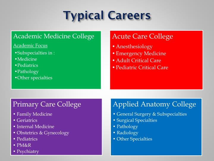 Typical Careers