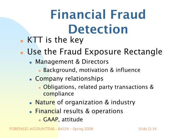 Financial Fraud Detection