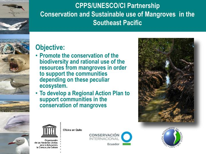 CPPS/UNESCO/CI Partnership