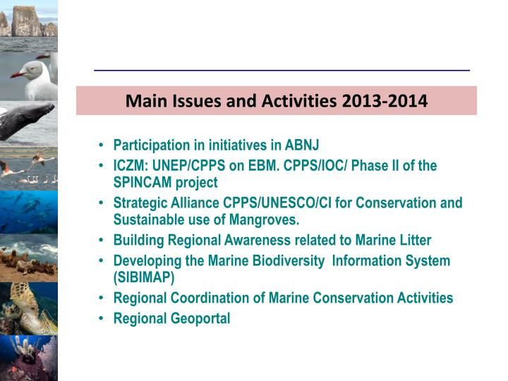 Main Issues and Activities 2013-2014