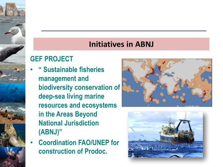 Initiatives in ABNJ