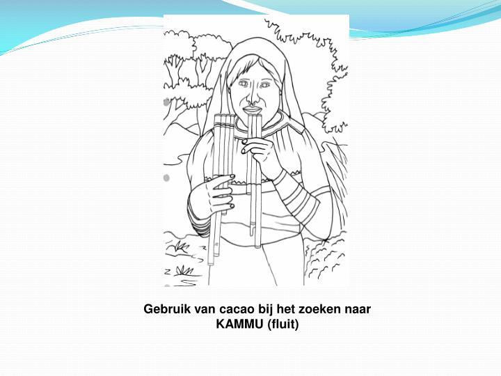 Gebruik van cacao bij het zoeken naar KAMMU (fluit)