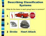 describing classification systems