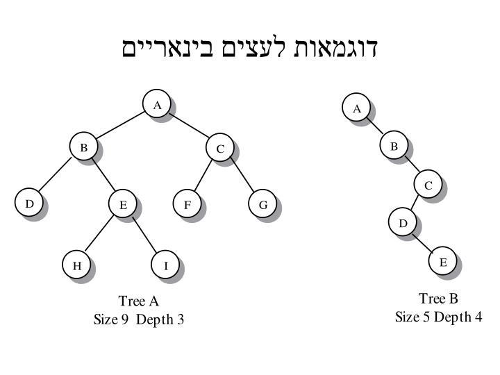 דוגמאות לעצים בינאריים