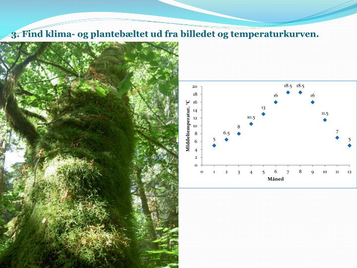 3. Find klima- og plantebæltet ud fra billedet og temperaturkurven.