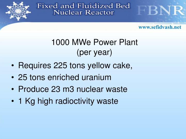 1000 MWe Power Plant