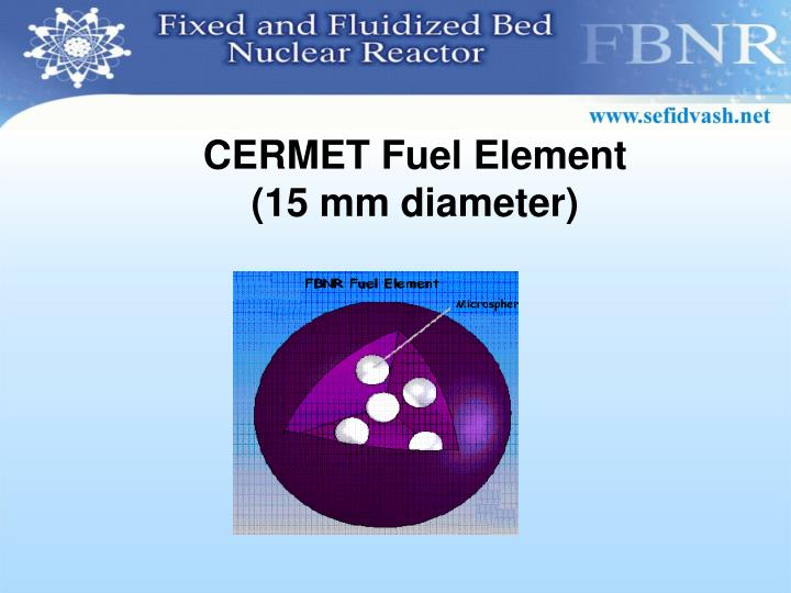 CERMET Fuel Element