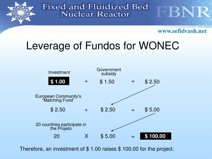 Leverage of Fundos for WONEC