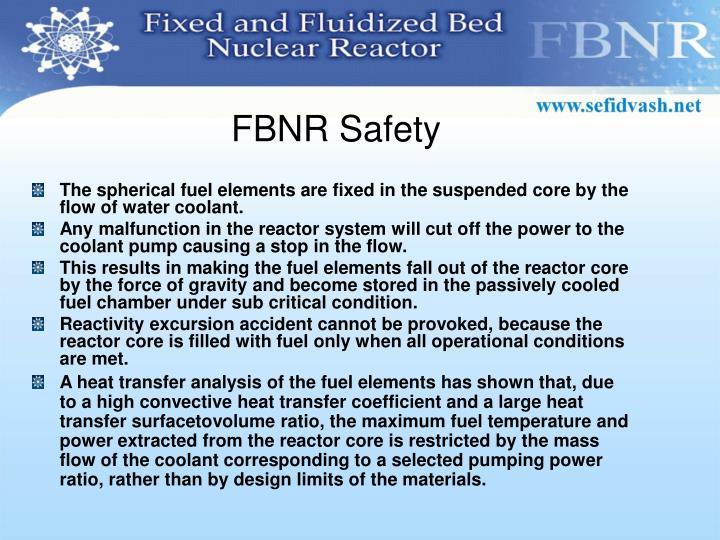 FBNR Safety