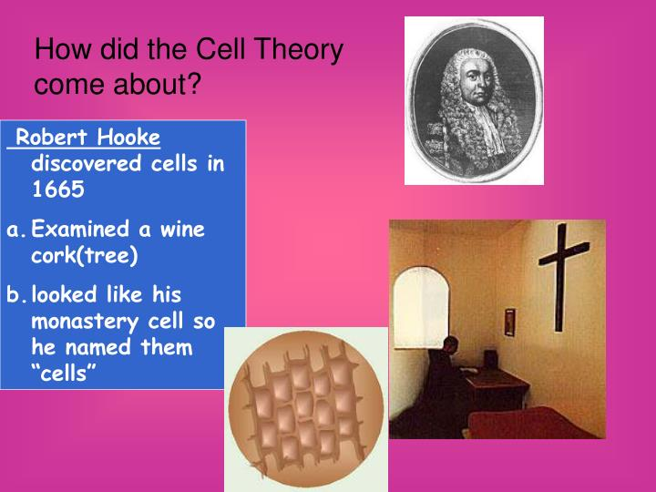 How did the Cell Theory come about?