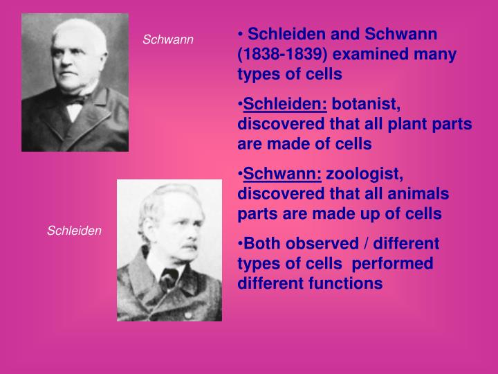 Schleiden and Schwann (1838-1839) examined many types of cells